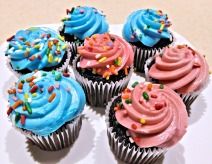 chocolate-mini-cupcakes-749498_1920